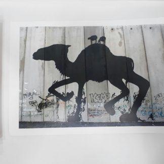 Arabian Camel Poster