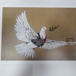Poster - Armored Dove