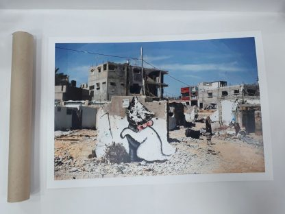 Poster - Gaza Kitten